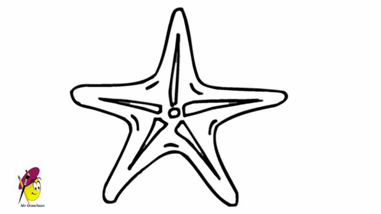 How to draw a starfish