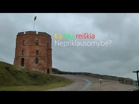 Studentai kalba apie laisvą ir nepriklausomą Lietuvą