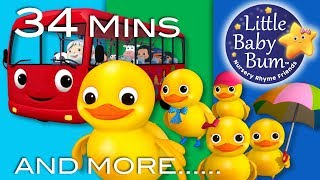 """Five Little Ducks"" 