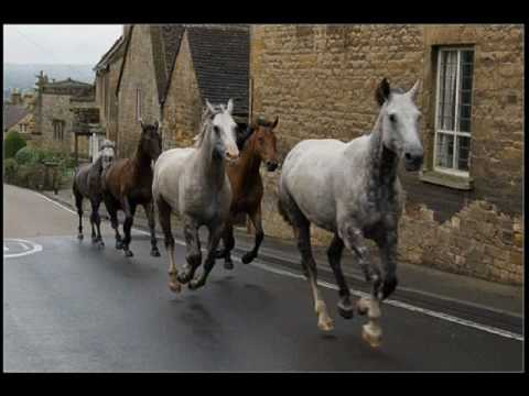 Anthony Phillips - Runaway Horses