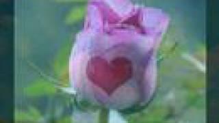 Watch Alex Ubago Dime Si No Es Amor video