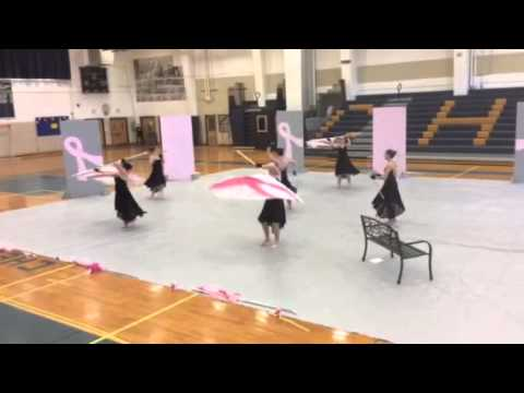 "Emmaus High School Color Guard 2014 ""The Fight"""