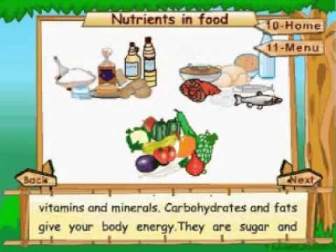Learn Science - Class 5 - Food and Health - Nutrients in Food - Animation