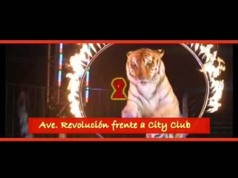 circo Atayde hermanos Nuevo laredo