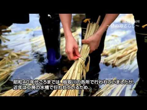 【Goovie5D】美濃市 「板取川」 ~楮の寒ざらし~