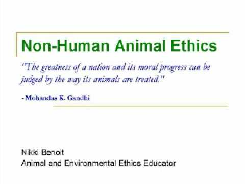 Essays from book why animal experimentation matters