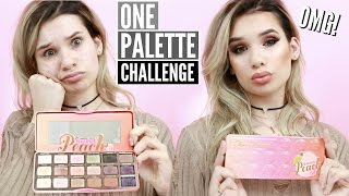 Full Face Using Only One Eyeshadow Palette Challenge