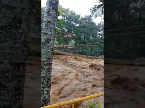 Taman mini banjir
