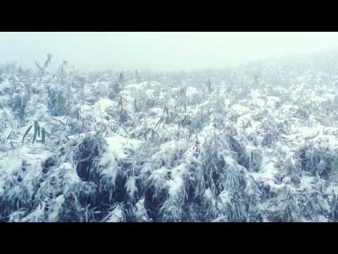 陽明山的冬季