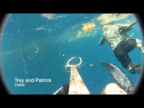 Archangel Spearfishing - 10 (4th of July 2012)