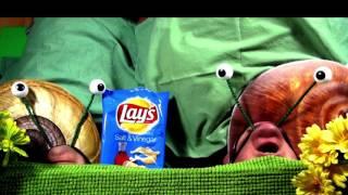 Lay's Salt & Vinegar Chips Commercial