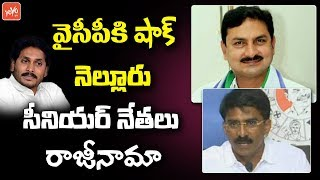 Nellore YCP Senior Leaders Quits From The Party | Big shock to YS Jagan | AP Elections