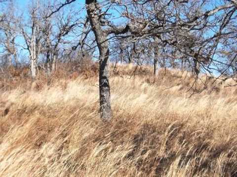 Homes for Sale - 36334 ew 1210 rd seminole OK 73020 - Cynthia Bidack