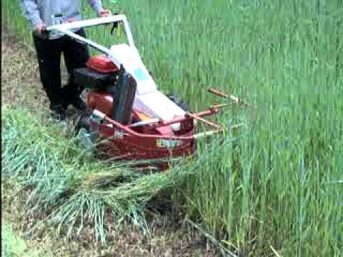 how to cut weeds with equipment
