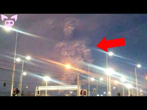 Monsters That Have Been Spotted in Real Life