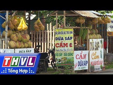 THVL | Nhịp sống đồng bằng - Nhịp sống Trà Vinh: Quê hương dừa sáp