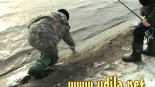Moscow river  spinning fishing 14.03