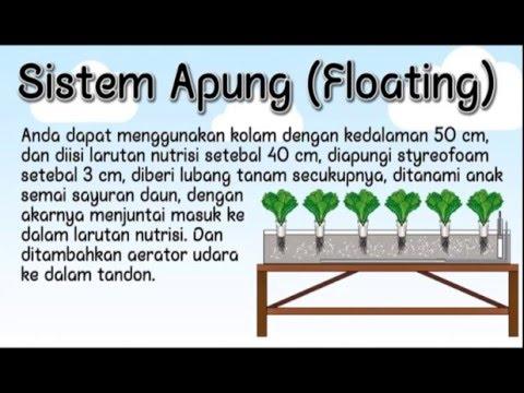 Cara Menanam Hidroponik System Sumbu (Wick) & System Apung (Floating)