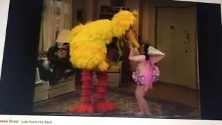 Big Bird and Gabi dance Baby Cats from Baby Genius Baby Animals Favorite Sing-A-Longs