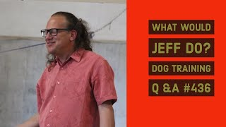 What Would Jeff Do? Dog Training Q & A 436