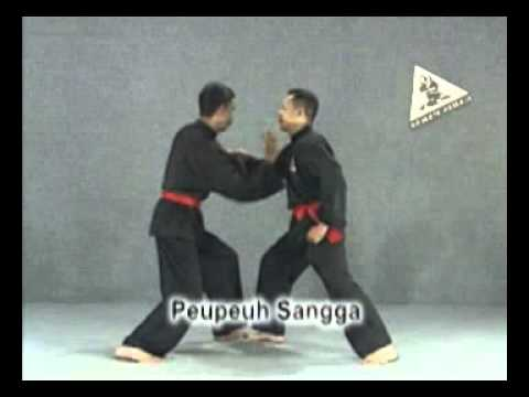 How to Learn Pencak Silat Kembangan Garis Paksi Indonesia Image 1