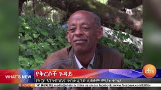 አዲስ ነገር ጥቅምት 7 2011 ዓ.ም  / What's New October 17, 2018