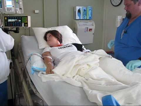 Bone Marrow/Stem Cell Transplant