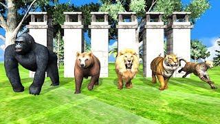 Color Gorilla Animals Finger Family Song For Kids | Lion,Tiger,bear,cheetha,children,NASH TOON Tv