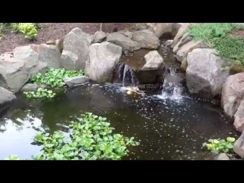Garden Waterfalls by Greenhaven Landscapes in Vancouver WA