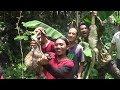 Berburu Musang Dedes part 2 thumbnail