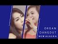 Opening ORGAN DANGDUT NEW ALASKA @ Dukuh Sari Ciborelang Jatiwangi Majalengka