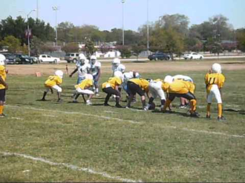 WTYFL 3RD WEEK TIGERS-VS-STEELERS.wmv