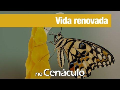 Vida renovada | no Cenáculo 23/04/2021