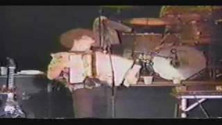 Vídeo 21 de Weird Al Yankovic