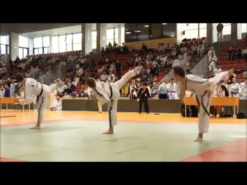 This is HAPKIDO (Best of in HD)