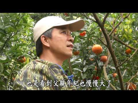 台綜-農夫與他的田-20160627 青年農夫的理想田