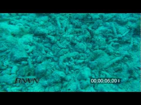 12/11/2009 HD Stock footage of dead coral reefs