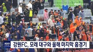 강원FC, 이번 주말 대구와 올해 마지막 홈경기