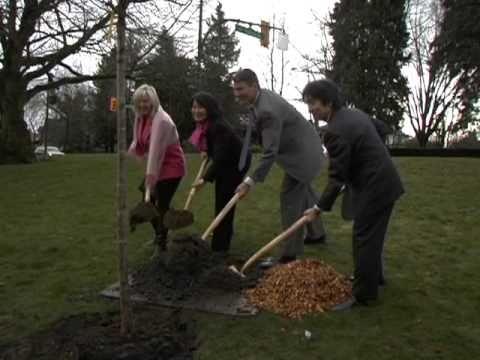 Vancouver  Mayor Gregor Robertson Plants Cherry Blossom Tree