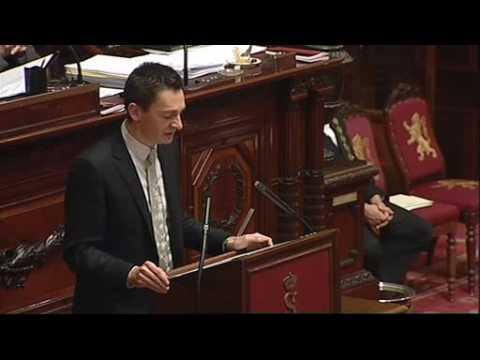 Intervention Services Secrets (MRD) Benoit Hellings Sénat Ecolo 21012009