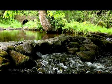 RELAXATION-Amazing Choir-Sacred Chant-Medieval Polyphony Song-Tranquil Nature Sounds-Flowing Water