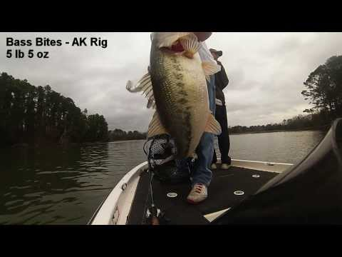 Lake Guntersville Bass Montage!