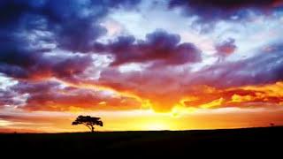 Watch Acrimony Firedance video