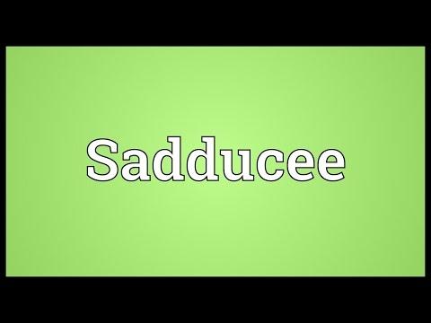 Header of Sadducee