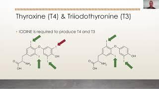 Lab Diagnostics (Thyroid) Webinar June 15 2020