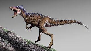 The Rise of the Tyrannosaurs