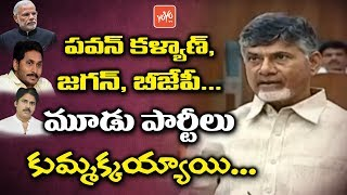 Chandrababu Naidu Confirms the Relation Between Pawan Kalyan Janasena, Jagan YCP and BJP