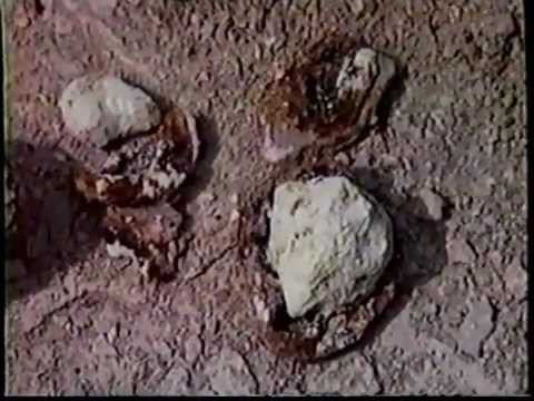 Ruins Of Sodom And Gomorrah Found ! video