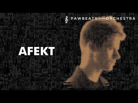 Pawbeats Ft. Justyna Steczkowska - Afekt