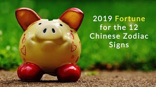 2019 Fortune for the 12 Chinese Zodiac Signs